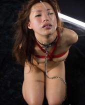 BlowJob Star Mayu Itou - BlowJobJapan - JAVNetwork.com